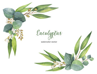 Fototapeta Watercolor vector wreath with green eucalyptus leaves and branches. obraz