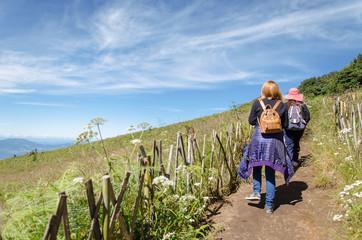 Traveler trekking at Kew Mae Pan Nature Trail (Doi Inthanon National Park),Chiangmai,Thailand
