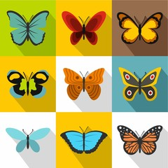 Insects butterflies icons set, flat style