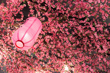 Japanese lantern pink color with plastic sakura.