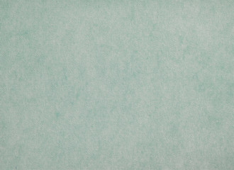 Plain pastel abstract canvas background in green