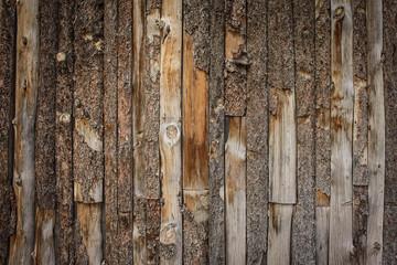 Palissade en bois brut Wall mural