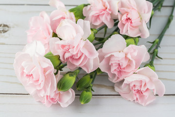 Pink carnations for holiday.