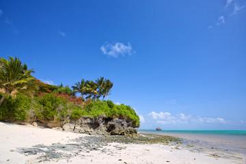 Wall Mural - Tropical beach in Zanzibar, Tanzania