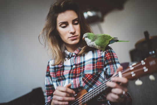 Young hipster girl playing ukulele guitar at home interior with her favorite pet on shoulder, pretty woman sitting at home on sofa with green parrot and playing ukulele guitar