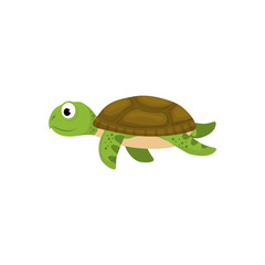 Marune turtle animal icon vector illustration graphic design