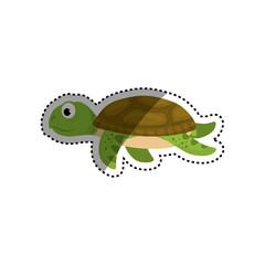 Marune turtle animal icon vector illustration graphic design