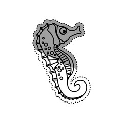Sea horse animal icon vector illustration graphic design