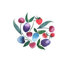 Bright juicy berries in a group watercolor hand sketch
