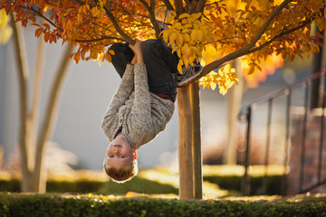 Boy hanging upside down from the tree.