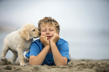 Young boy playing with golden labrador puppy at beach.