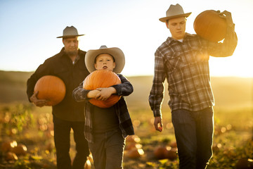 Father and his two sons gathering pumpkins from a pumpkin farm.