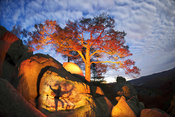Foto op Canvas Australië Tent in colorful mountains