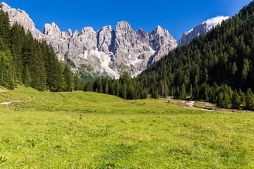 Wall Mural - View of Val Venegia in summer with the Pale di San Martino in background. Dolomites, northern Italy.