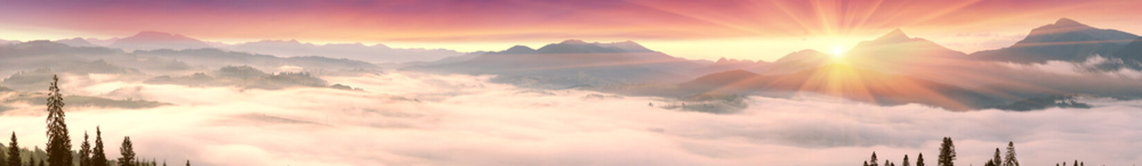 Wall Mural - Foggy sunrise in the Carpathian mountains