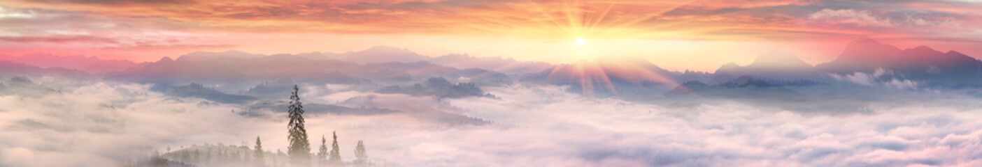Wall Mural - Foggy sunrise in the Carpathian mountains