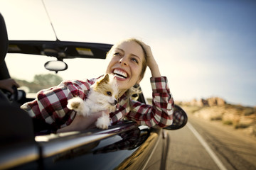 Laughing young woman sitting in the passenger seat of a convertible car with her small dog on a road trip.