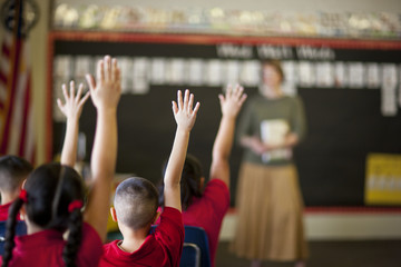 Students with their hands raised in a classroom.