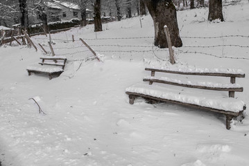 Snow covered wooden bench
