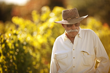 Senior man standing in his vineyard
