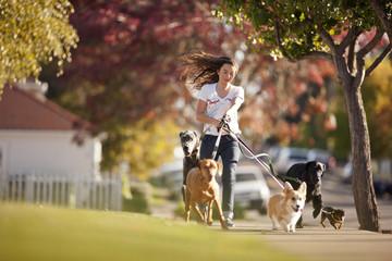 Teenage girl dog walking on a suburban street.