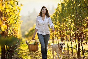 Mature woman walking through vineyard with her dog and carrying basket with flowers.