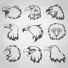 Hawk, falcon or eagle head mascot set vector illustration isolated on white background