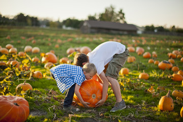 Two brothers playing in a pumpkin patch.