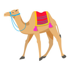 Camel cartoon vector illustration on white. Two-humped desert animal with bridle and saddle.
