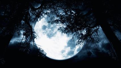 Mystical Moon Night. Spooky Tree Silhouette