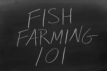 "The words ""Fish Farming 101"" on a blackboard in chalk"