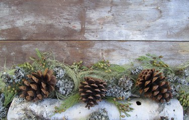 Pine cones and birch bark border on wood background with copy space.