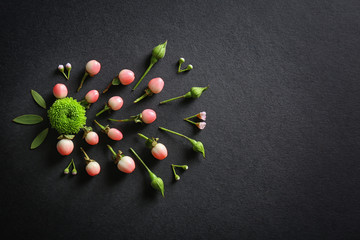 Composition of flowers and leaves on black background