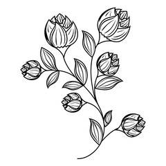 decorative flower isolated icon vector illustration design