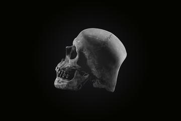 Still life skull dark tone concept Halloween day