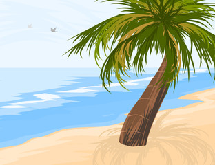 Palm tree on the beach vector nature seascape background