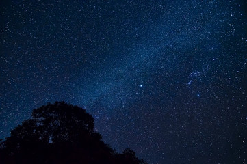 white milky way shot in forest on top of the mountain at northern of thailand..