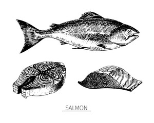 Vector hand drawn set of seafood icons. Isolated salmon. Engraved art. Delicious marine food menu sketched objects.