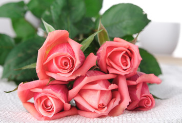Pink Roses, Flowers on White Background, card for Valentines day, copy space