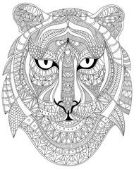 Tiger portrait graphic vector illustration