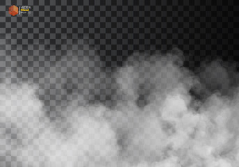 Garden Poster Smoke Fog or smoke isolated transparent special effect.
