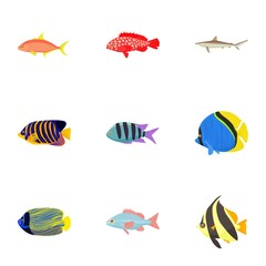 Fish icons set, cartoon style