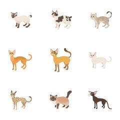 Furry friend icons set, cartoon style