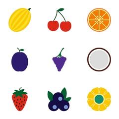 Types of fruit icons set, flat style
