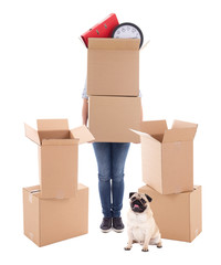 moving day concept - woman holding brown cardboard boxes and dog