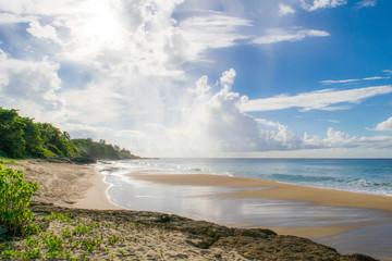 Tropical Beach Sightseeing