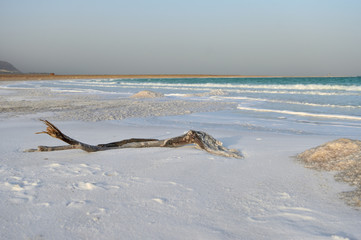 Dead Sea coast in the evening in windy weather