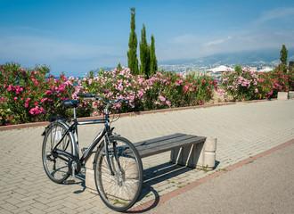 Bike on the background of the sea coast