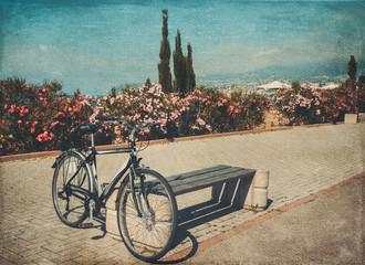 vintage bicycle photos