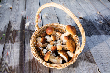 Fresh boletus mushrooms in the basket on wooden table